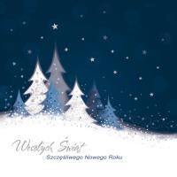 kartka świąteczna bez życzeń S-24