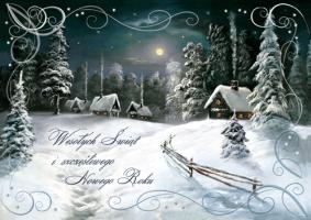 Biznesowe kartki świąteczne B 565